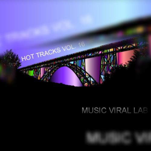 Hot Tracks Vol. 16 (2021)