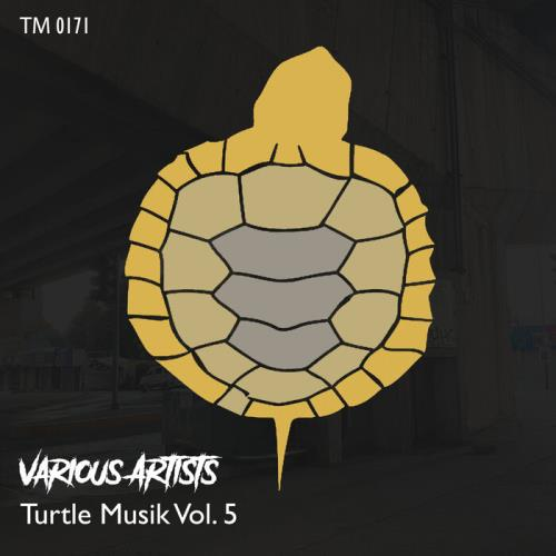 Turtle Musik Vol 5 (2021)