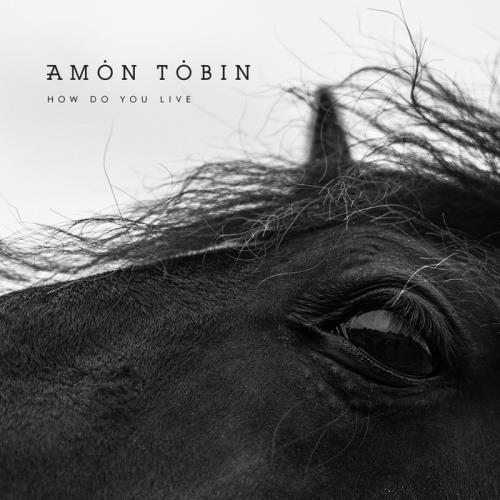Amon Tobin — How Do You Live (2021)