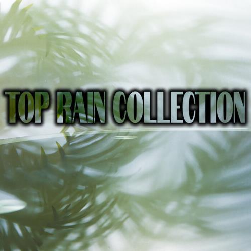 Top Rain Collection (2021)