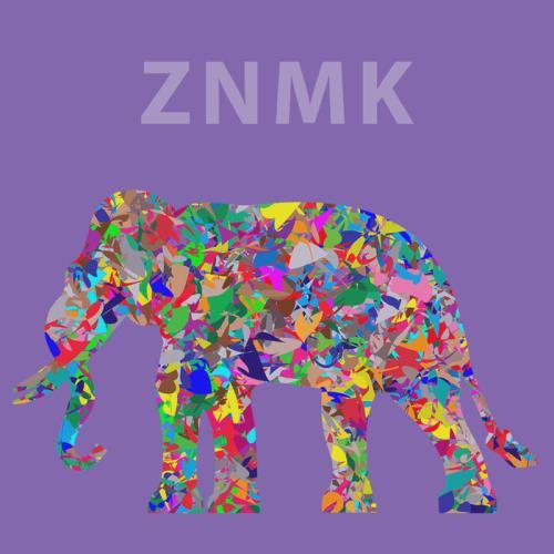 ZNMK — Expectation (2021)