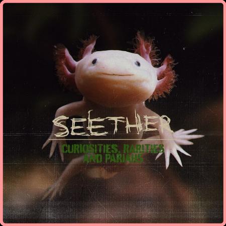 Seether - Curiosities, Rarities And Pariahs (2021) Mp3 320kbps