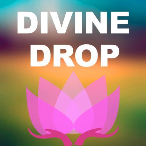 Divine Drop — Hit Target (2021)