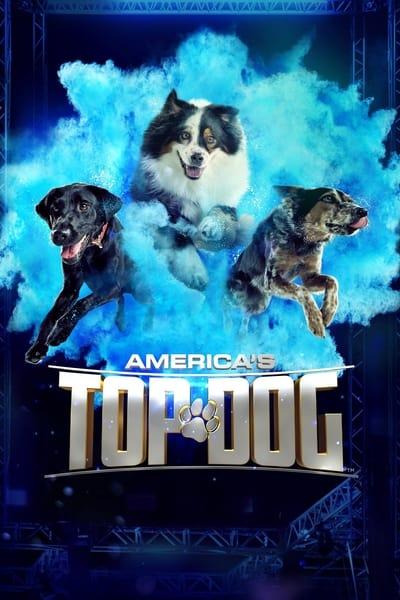 Americas Top Dog S03E05 720p HEVC x265-MeGusta