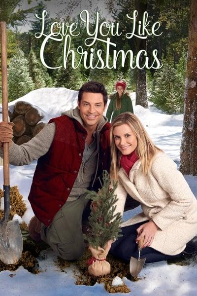 Love You like Christmas 2016 1080p WEBRip x265-RARBG