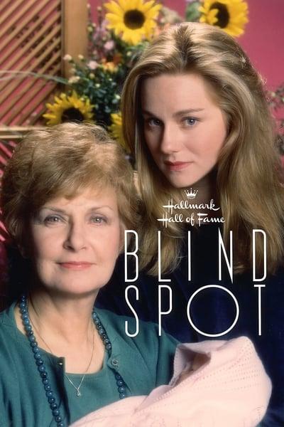 Blind Spot 1993 1080p WEBRip x265-RARBG