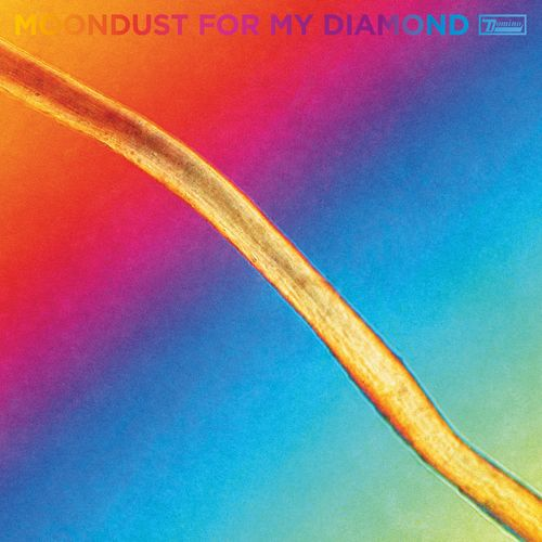 Hayden Thorpe — Moondust For My Diamond (2021)