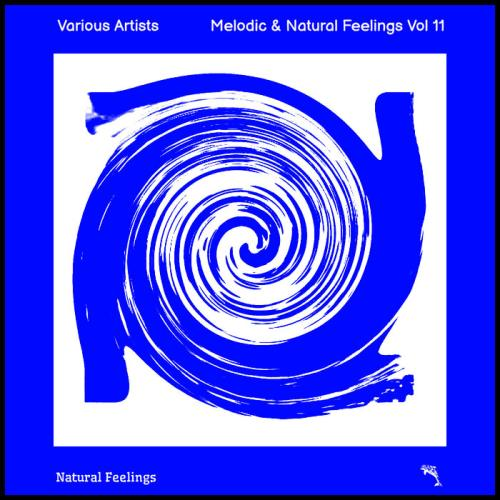 Melodic & Natural Feelings Vol 11 (2021)