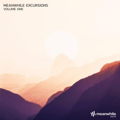 Meanwhile Excursions Vol 1 (2021)