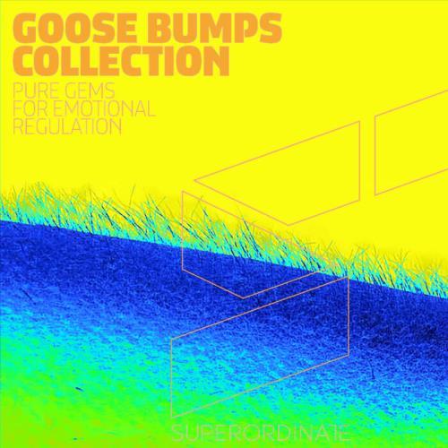 Goose Bumps Collection, Vol. 6 (2021)